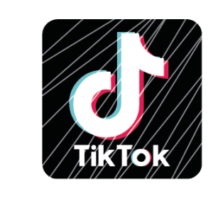 Buy views on Tik Tok - Visibility Reseller - Visibilityreseller.com